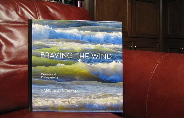 Braving the Wind hardcover book